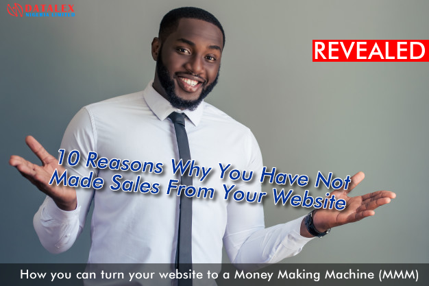 10 Reasons Why You Have Not Made Sales From Your Website